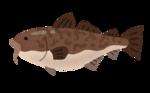 fish_tara.png